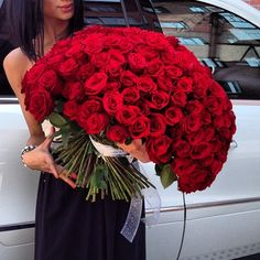 Happy Valentine's Day with oversize bouquet full of red roses. Love Rose, My Flower, Pretty Flowers, Flower Power, Flower Bomb, Rose Bouquet, Big Bouquet Of Flowers, Floral Bouquets, Beautiful Roses