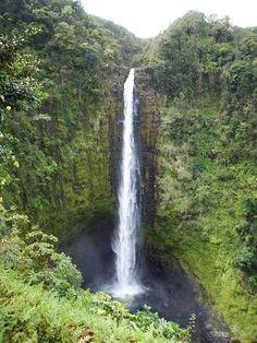 Akaka Falls in Kona Hawaii