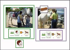 Einstein, Animal Books, Therapy, Baseball Cards, Learning, Sports, Php, Animals, Montessori