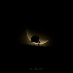 See related links to what you are looking for. Look At The Moon, Under The Moon, Moon Photography, Amazing Photography, Luna Moon, Moon Moon, Moon Dance, Cosmos, Shoot The Moon