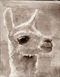 alpaca watercolor