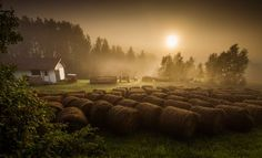 Serenity Photo by Daniel Aucoin -- National Geographic Your Shot