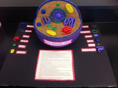 3d animal cell model ideas - Google Search