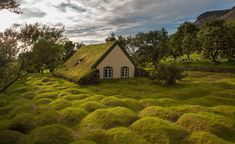 Turf Church in a Lava Field. Southeast Iceland, This traditional 18th-Century turf church in Hof, Southeast Iceland, was created as protection from the elements and remains one of the last standing in the country today.