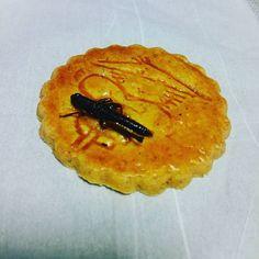 クッキーに虫付いてる  イナゴ、意外と美味しい❤  #東亜和裁 #和裁 #お土産もらった #食べる #勇気いる#イナゴ #クッキー