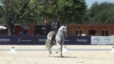Pedro Torres - Working Equitation Just wonderful to watch Pedro in action!