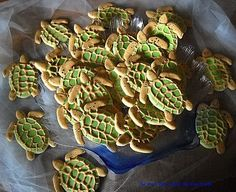 The South Padre Island Flip Flop Foodie: Turtle Cookies and a Book Signing