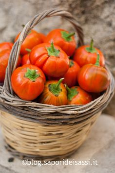 Red Eggplants - Melanzana rossa di Rotonda DOP