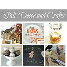 18 Fall Decor Projects and Top Picks From Party! | Design, Dining + Diapers