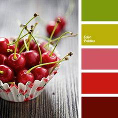 bright scarlet, brown, brown bog, burgundy, chocolate color, dirty green, green, marsh, pastel pink, pink, Red Color Palettes, the color of cherry, wine color.