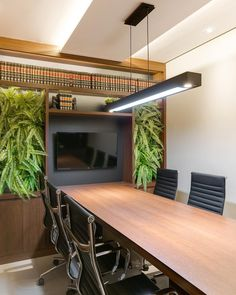 Samambaia: como cuidar, tipos e 70 ideias para decorar a sua casa Law Office Design, Law Office Decor, Modern Office Design, Office Workspace, Office Interior Design, Ceo Office, Office Designs, Corporate Interiors, Office Interiors