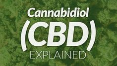 Cannabidiol (CBD): Fighting Inflammation & Aggressive Forms of Cancer | Medical Jane