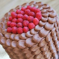 Chocolate Raspberry Cake frosted with Chocolate Buttercream in a petal pattern.
