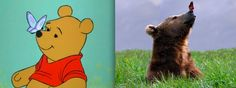"""Winnie the Pooh"" - Pooh and a butterfly 