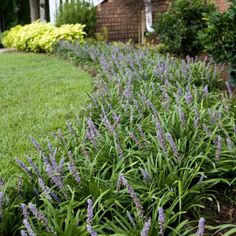 Front garden bed ideas (Southern Living) The right planning There are many wishes attached to the fr Lawn And Garden, Garden Beds, Home And Garden, Garden Plants, Southern Landscaping, Backyard Landscaping, Patio Makeover, Southern Living, Garden Planning