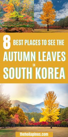 Travel guides and tips for your travel to Korea to see autumn leaves fall - best places to see autumn scenery and autumn colours in Seoul South Korea, Seoul Korea travel guide and reasons to travel here #gotravel #southkorea #travelkorea Beautiful Vacation Spots, Dream Vacation Spots, Beautiful Places In The World, Beautiful Places To Visit, Top Places To Travel, Top Travel Destinations, Seoul Korea Travel, Asia Travel, Seoraksan National Park