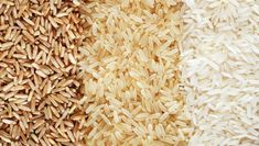 Do you have diabetes but are tempted to eat rice? Don't worry, you can still consume brown rice! Read about rice processing side effects here. White Rice, Brown Rice, Lean Bulk Diet, Bulking Diet, Rice Plant, Look At This Photograph, Food Technology, The Husk, Bodybuilding Recipes