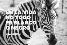"""""""En la #Vida no todo es #Blanco o #Negro"""". @candidman #Frases #Motivacion"""