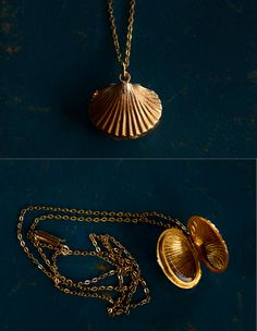 Shell locket