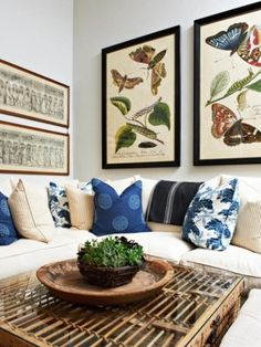 Image from http://photo.foter.com/photos/pi/250/designer-kari-arendsen-keeps-it-casual-in-this-living-room-where-vintage-lithographs-of-butterflies-and-moths-pull-the-same-navy-and-blue-tones-out-of-the-sofas-down-filled-pillows-and-throw.jpg.