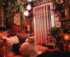 Feeling cozy at home. Room Ideas Bedroom, Bedroom Decor, 70s Bedroom, Witch Room, Aesthetic Room Decor, Witch Aesthetic, Aesthetic Dark, Aesthetic Fashion, Witch Cottage