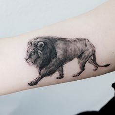 8,904 отметок «Нравится», 104 комментариев — Tattooist_Doy (@tattooist_doy) в Instagram: «: Walking Lion . #tattoo #tattoos #tattooing #art #tattooistdoy #inkedwall #design #drawing #타투…» Lion Arm Tattoo, Arm Band Tattoo, Tattoo Girls, Lion Walking, Dad Tattoos, Cat Tat, Make Tattoo, Body Art, Sketches