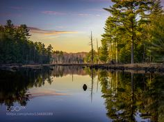Be Still by bodson15. Please Like http://fb.me/go4photos and Follow @go4fotos Thank You. :-)