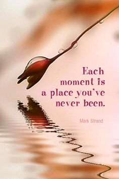 Daily Quotation for August 29, 2013 #quote #quoteoftheday Each moment is a place you've never been. - Mark Strand