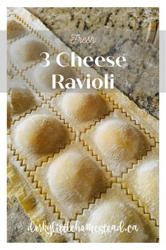 Homemade ravioli is so simple and delicious. It realy is one of those perfect comfort foods. Try this recipe out and have some fresh ravioli tonight! Cheese Ravioli Filling, Four Cheese Ravioli Recipe, Ravioli Dough Recipe, Ravioli Sauce, Ravioli Lasagna, Easy Cheese, Mantu Recipe, Homemade Cheese, Homemade Ravioli Recipes