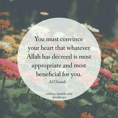 Imam Ali Quotes, Hadith Quotes, Allah Quotes, Muslim Quotes, Religious Quotes, Spiritual Quotes, Knowledge Quotes, Knowledge And Wisdom, Beautiful Islamic Quotes