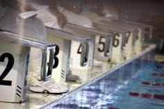 gare di nuoto: il giudizio...