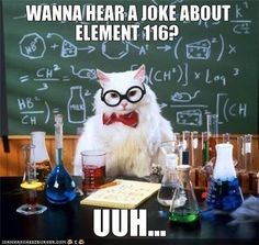 Chemistry Cat: Image Gallery | Know Your Meme