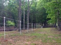 Electric Fencing Ideas That Will Work (And Will Fit Your Budget) Horse Paddock, Horse Arena, Horse Stables, My Horse, Horses, Horse Shelter, Cattle Farming, Goat Farming, Livestock