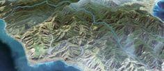 "Washpool and Kawakawa Huts - ""Busy only in birdlife"""