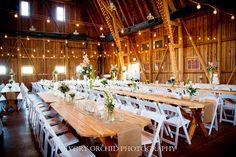 Picnic tables and more picnic tables! The Windmill Winery, Arizona Wedding Venue, Barn Wedding