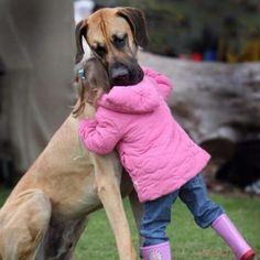 this hug says it all