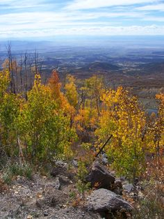 View from the Grand Mesa, Grand Junction, Colorado.. this is on the west end of Grand Mesa, by Lands End.