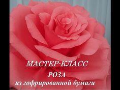 РОЗА МАСТЕР КЛАСС - YouTube