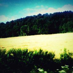 In viaggio. Fuori dal finestrino scorre l'agro romano