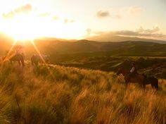 Horseback Riding in... #BucketList  http://travel.cnn.com/explorations/play/worlds-top-15-horse-treks-004706