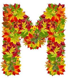 M, autumn alphabet isolated on white photo