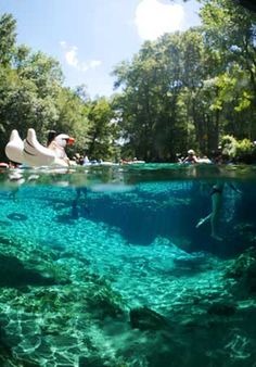 Florida Springs - Complete List of Florida's Springs
