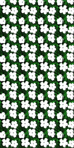 Andy Warhol   Small Flowers