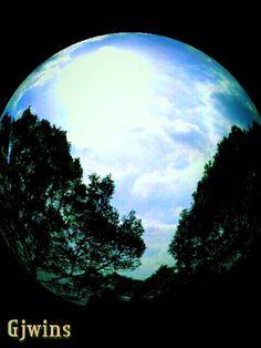 Round lookey  — #fisheye #trees #nature #sky #blue #bluesky #sunshine #andrography #streamzoo #photography • MyajaTani on Streamzoo