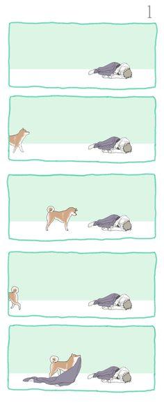 長谷部と柴犬1