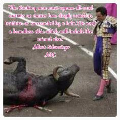 Sick! Bullfighting is thought to prove Machisimo/Bravado, but it actually proves how cowardly Humans can be.
