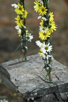 I really like this image, daisy chains on the rough plank swing.