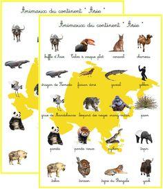 Résultats de recherche d'images pour «animaux par continent» Montessori, Les Continents, Woodland Party, Learn French, Explore, Images, Kids, Recherche Google, English