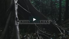 A visual glimpse into the alluring ambiance of the Amazon Rainforest. Shot on location in the Amazon Natural Region | Colombia | Brazil | Peru.  To find out more…