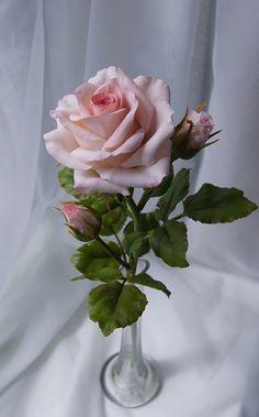 Fondant Flowers, Clay Flowers, Paper Flowers, Beautiful Rose Flowers, Amazing Flowers, Purple Roses, Pink Flowers, Sugar Paste Flowers, Rose Wallpaper
